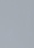 Туманный серый 49124-013