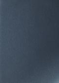 Королевская платина 1293008-195