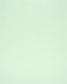 светло-серый (similar RAL 7035) 725105-167