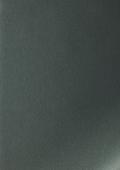 Императорская платина 1293009-195
