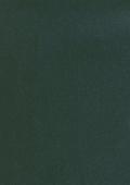 Зелёная ель 49110-013